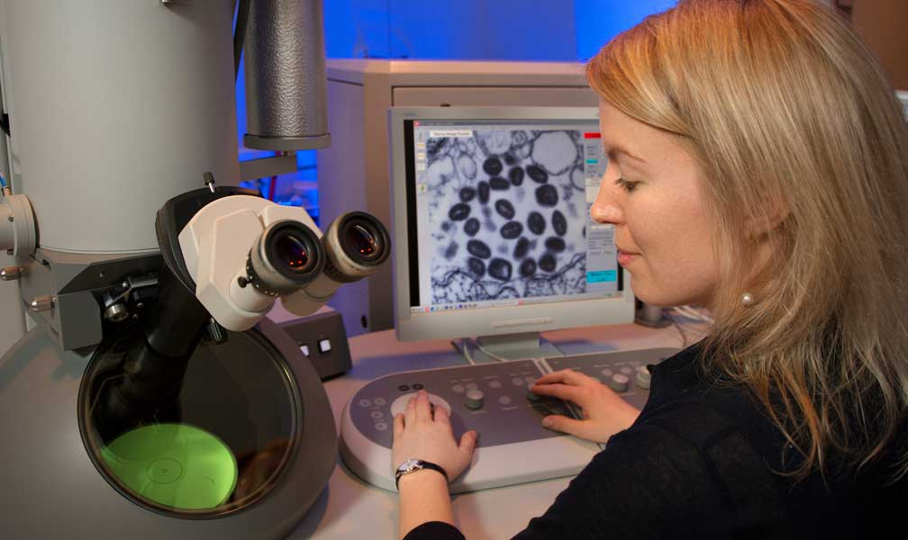 researcher using microscope